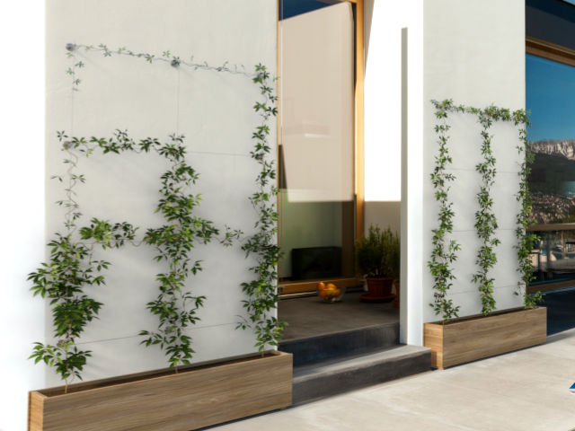 Green Wall Systems